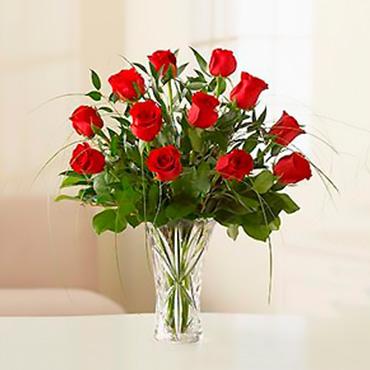 Amazing Roses - MOCA